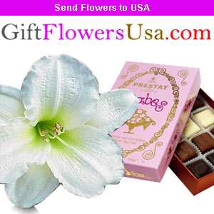 Show your intense love towards your mother with attractive gifts and quint